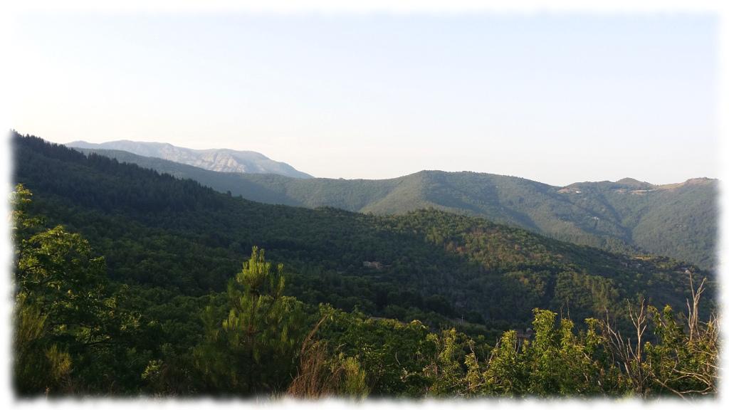 Mont-lozere_penens-haut