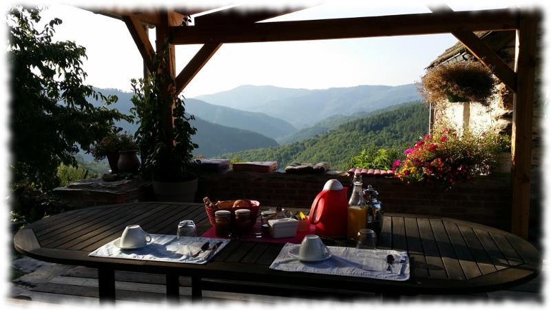 accueil-petit-dejeune-terrasse