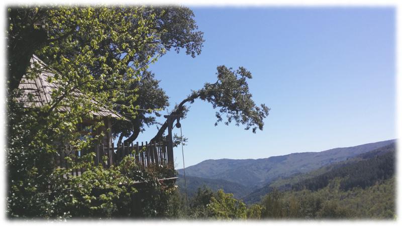 cabane-arbre-poulie tree house