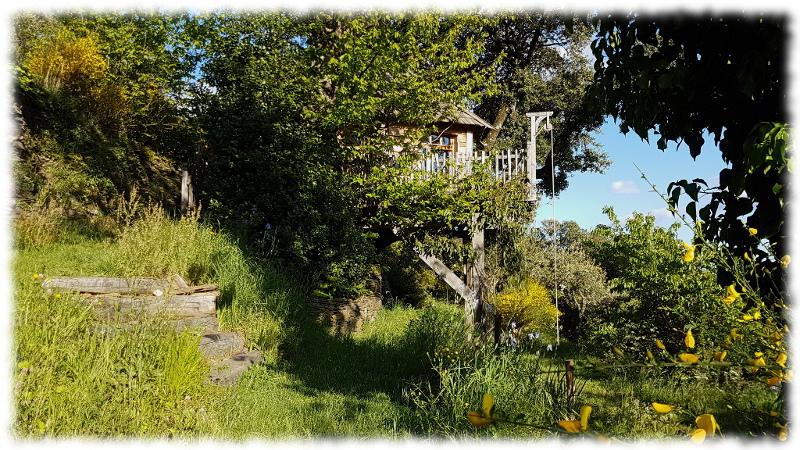 cabane-arbres-ouest-escalier tree house